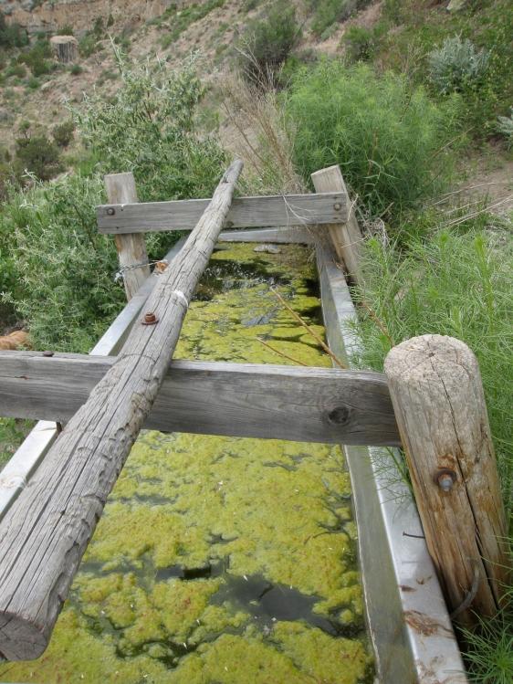 LittleBookCliffs Water