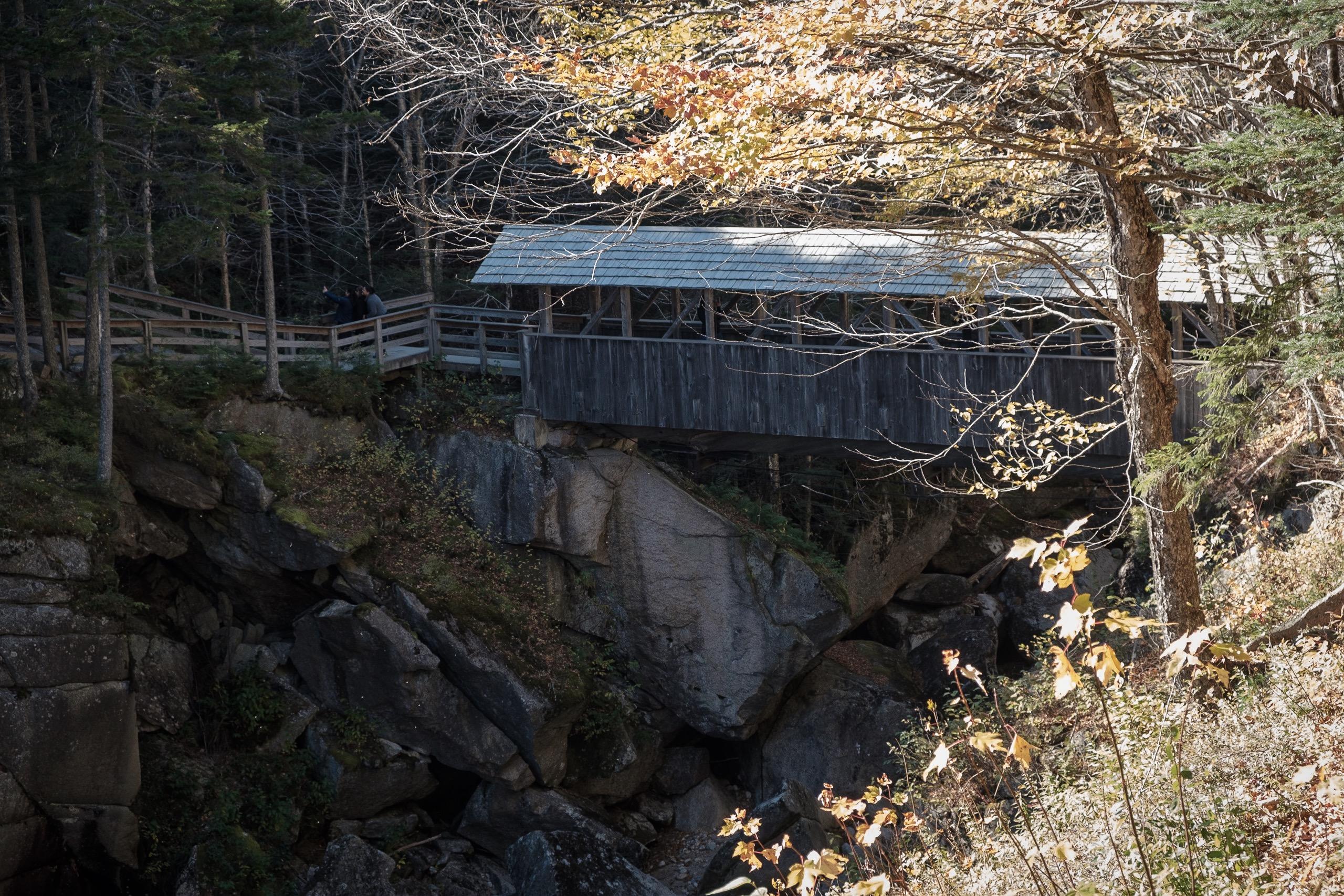 Covered bridge at the Pool